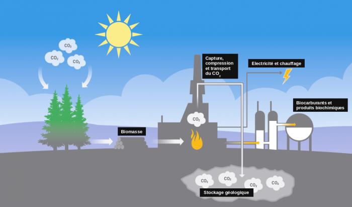 Schéma : Principe de la bioénergie avec capture et stockage du carbone. Source : http://gemini.no/en/2016/02/fjerner-co2-fra-naturens-kretslop/