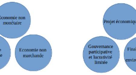 Modèle économique et critères d'évaluation des moyens d'action d'un projet de l'ESS